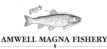 Amwell Magna Fishery